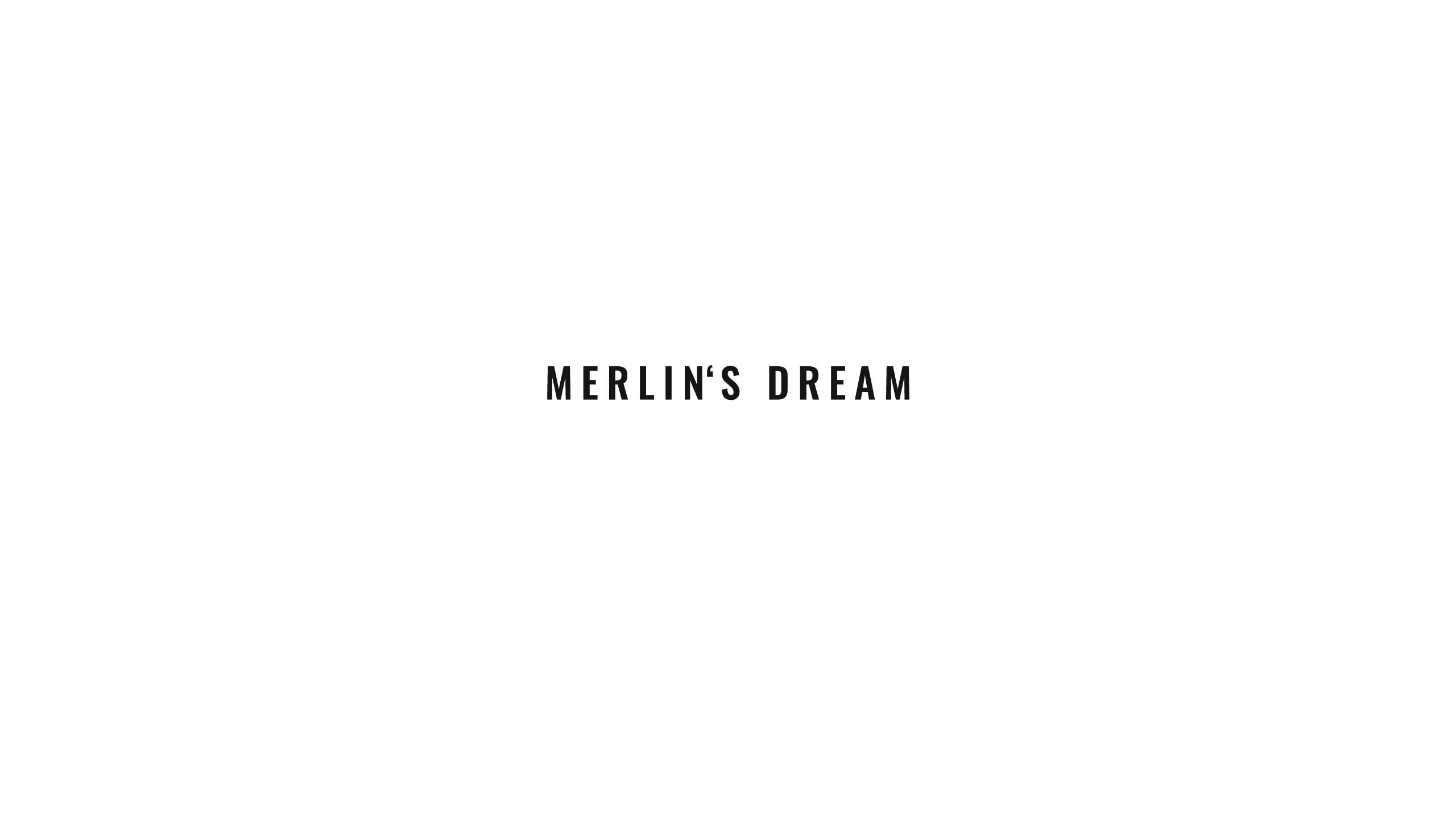 1a_Text_merlins_dream